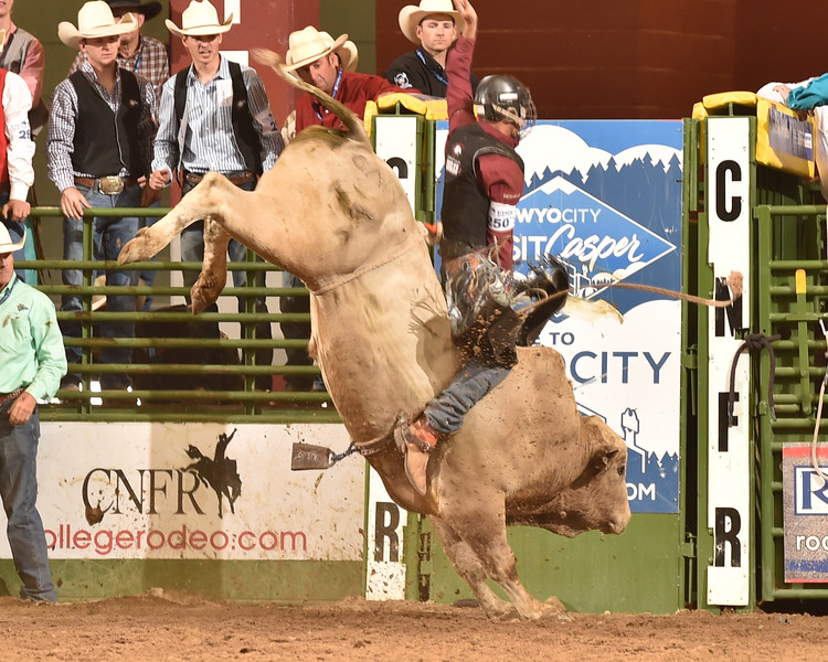 Chadron State College student Cordale Martin of Panhandle, Texas, competes in the College National Finals Rodeo in Casper, Wyo., in June 2017. (Hubbell Rodeo photo)
