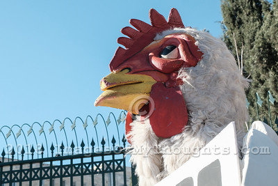 Battery Cages for Egg Laying Hens Protest in Jerusalem, Israel