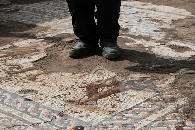 Rare Roman Period Mosaic Uncovered in Caesarea, Israel