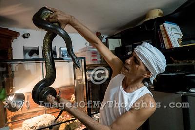 Snake Handler Rafael Yifrach