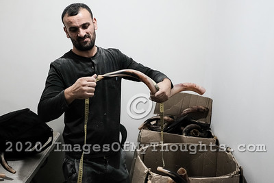 Shofar Manufacturing Ahead of the Jewish New Year