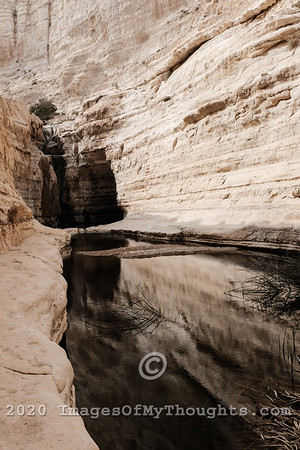 Scenes of the Negev Desert