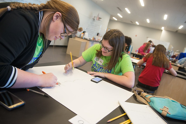 Globe/Roger Nomer<br /> Kylee Dannelley, a sophomore from Riverton, left, and Rylee Buschman, freshman, work on a poster on Friday during the Foreign Language Field Day at Joplin High School.