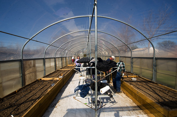 Volunteers from the Ozark Gateway Master Gardeners work to install an irrigation system inside the new greenhouse at Crosslines on Saturday afternoon.<br /> Globe | Laurie Sisk