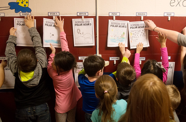 Globe/Roger Nomer Students hang books they wrote about polar bears during kindergarten on Thursday at Kelsey Norman Elementary.