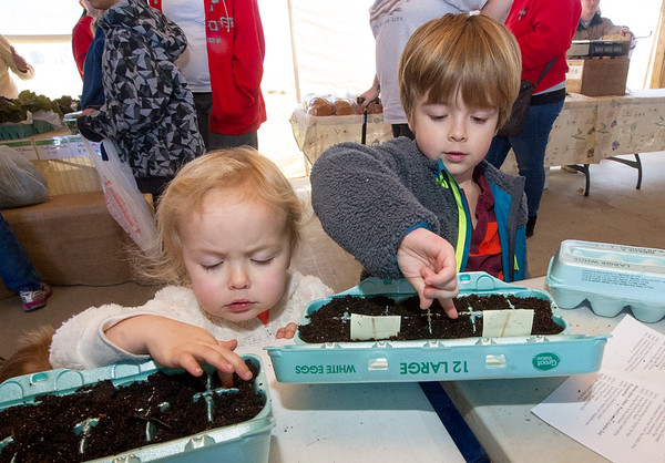 From the left: Ellie McGinty, 3 and Comnnor McGinty, 5, plant their own starter gardens with lettuce and spinach as part of a free program for kids on Saturday at the Webb City Farmers Market.<br /> Globe | Laurie Sisk