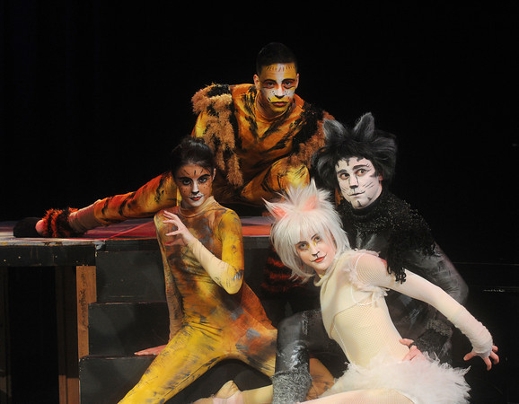 """Globe/Roger Nomer<br /> (from left) Hanna Wade, as Electra, Sage Brown, as Mungojerrie, Lyndsey Bowen, as Victoria and Brock Goben, as Munkustrap, will perform in """"Cats."""""""