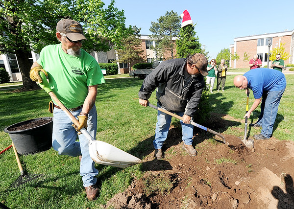 From the left: Ozark Nursery volunteers Don Buck, Michael McDonald and Steven McDonlad plant a juniper tree the nursery donated in front of Missouri Southern's Reynolds Hall as part of Earth Day festivities on Friday at MSSU.<br /> Globe | Laurie Sisk