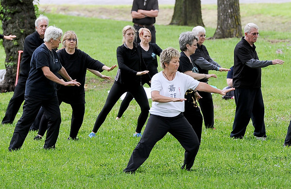 Becky Browne, center, leads about 40 participants in Tai Chi exercises in observance of World Tai Chi Day on Saturday at Landreth Park.<br /> Globe | Laurie Sisk