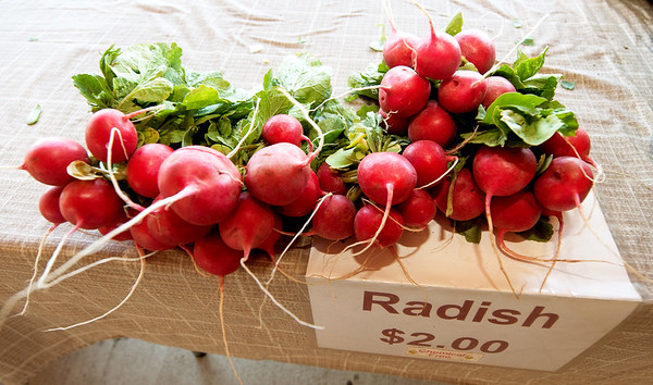 Fresh radishes sit on a table on Thursday afternoon at the Webb City Farmers Market. The market is open of Tuesdays, Thursdays and Saturdays.<br /> Globe | Laurie Sisk