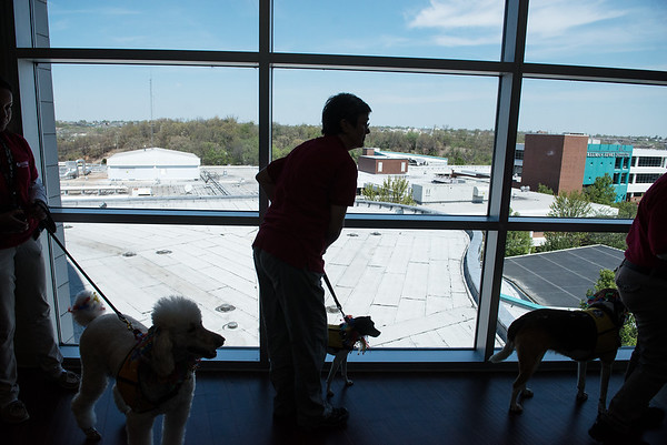Therapy dogs and handlers visit rooms for Natonal Therapy Animal Day at Freeman West on Monday.<br /> Globe   Roger Nomer