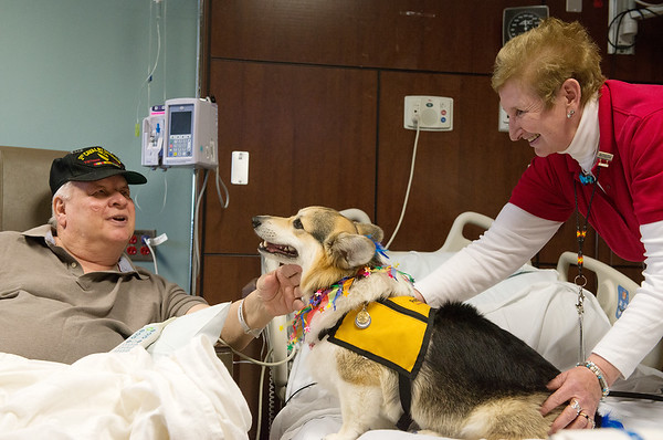 Norman Lewis, Joplin, visits with Gibbs and owner Sue Hicks for Natonal Therapy Animal Day at Freeman West on Monday.<br /> Globe   Roger Nomer