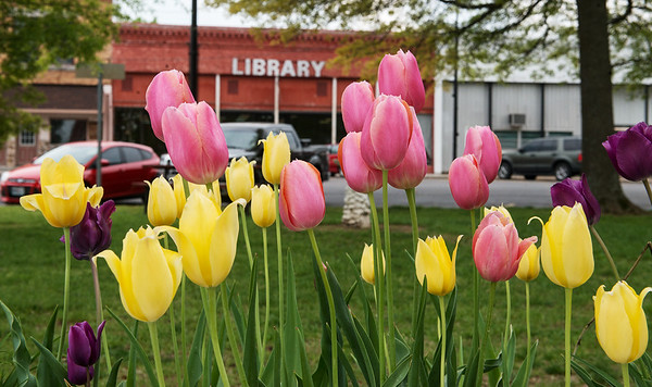 The City of Sarcoxie is planning on making improvements to their library, including adding a coffee shop. The city has also worked on improvements to the town square, including planting flower beds.<br /> Globe | Roger Nomer