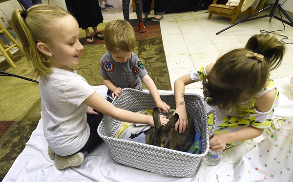 From the left: Lily Brown, 8, Aden Watkins, 2 and Ryleigh Turnbough, 6, visit with Trevor the rabbit on Saturday at the Empire Market. Trevor was also available for Easter themed portraits on Saturday.<br /> Globe | Laurie SIsk