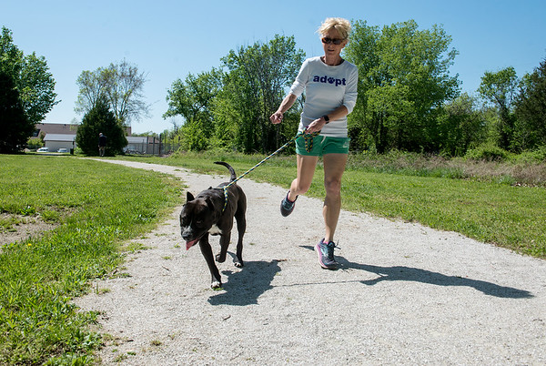 With his tongue leading the way, Capone runs down a trail at the Joplin Humane Society with Kelly Johnson on Friday afternoon. Money from the Joplin Memorial Run will go to help improve the trail.<br /> Globe | Roger Nomer