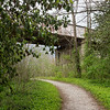 Improvements are being made to the Ruby Jack Trail, seen here in Carthage.<br /> Globe | Roger Nomer