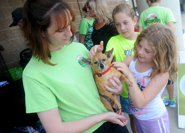 Globe/Roger Nomer<br /> Faithful Friends Animal Advocate Luciana Buren holds Maxx for Trobi, 10, and Brea, 8, Haslip to pet during Saturday's pet adoption event at PetSmart.