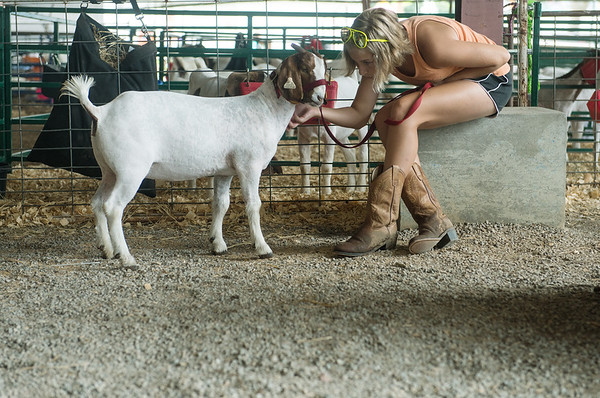 Globe/Roger Nomer<br /> Shawnda Rutledge, 13, Pittsburg, comforts her goat on Wednesday at the Cherokee County Fair in Columbus.