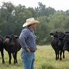 Globe/Roger Nomer<br /> Tom Hardcastle, agriculture manager for the Quapaw Cattle Company, looks after cattle on Wednesday.