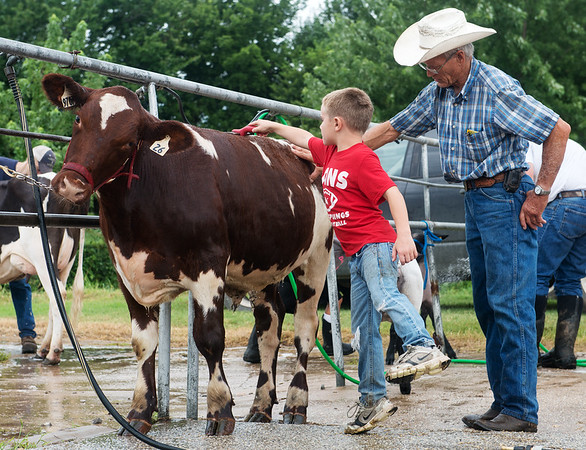 Globe/Roger Nomer<br /> Carl Burton helps his grandson Alex, 8, wash his feeder steer on Wednesday at the Cherokee County Fair in Columbus.