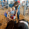 Globe/Roger Nomer<br /> Caitlyn McKibben, Lamar, shows Tripp, 2, and Rolli, 5, Wolf, Liberal how to care for her pigs on Thursday at the Lamar Free Fair.