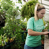 Globe/Roger Nomer<br /> Chloe Jaudes, a College of the Ozarks senior from Morrisville, Mo., repots a plant at the college's greenhouse on Thursday.