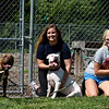 "From the left: Joplin Humane Society volunteers Kelly Johnson, Haley Pope and Paige Bordewick pose with ""Tebow,"" ""Ava"" and ""Fleur"" on Tuesday at the Joplin Humane Society.<br /> Globe 