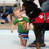 Thomas VanBruggen, 7 months, moves in for a closer look at a dog on Saturday during the Doggie Dive In at Ewert Park.