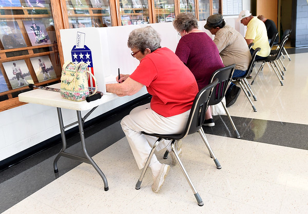 Voters fill booths at Neosho High School, where officials reported a larger than average turnout for a midterm primary.<br /> Globe | Laurie Sisk