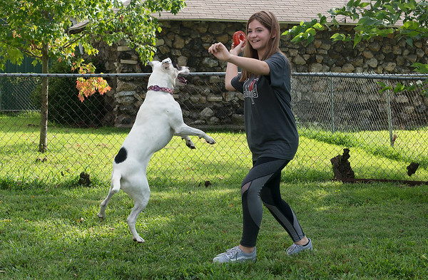 Kyleigh Naff, 12, plays fetch with Milla on Wednesday in Joplin.<br /> Globe | Roger Nomer