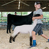 Carter Hubbard, 14, Welch, demonstrates holding a sheep for showmanship on Friday at the Ottawa County Fair.<br /> Globe | Roger Nomer