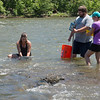 (from left) Kali Boroughs, a Pittsburg graduate student from Kingman, Kan., Joshua Holloway, a PSU senior from Girard, and Alexandra King, recend PSU graduate, collect invertebrates for a sample on the Spring River in Baxter Springs on Thursday.<br /> Globe | Roger Nomer