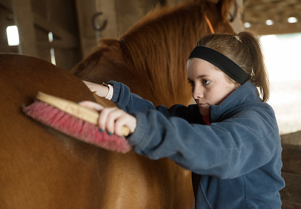 Using her horse Dunny to support her weight, Sami determinedly uses a brush in preparation for a ride on Wednesday in Lamar.<br /> Globe | Roger Nomer