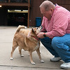 Mark Norris plays with his dog Maggie on Wednesday at his Joplin home.<br /> Globe | Roger Nomer