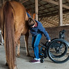 Sami Bayless steadies herself with her horse Dunny as she reaches for a brush on Wednesday in Lamar.<br /> Globe | Roger Nomer