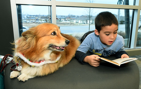 """Six-year-old Dominic Myers reads to """"Dudley,"""" a 10-year-old Corgi during Dog Day Afternoon on Tuesday at the Joplin Public Library. <br /> Globe 
