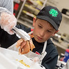 William Wright, 11, Carthage, helps put together a delivery meal while volunteering at the Carthage Crisis Center with his family on Wednesday.<br /> Globe | Roger Nomer