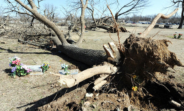 Globe/T. Rob Brown<br /> Numerous trees are down in Highland Park Cemetery due to Tuesday night's severe storm, Wednesday morning, Feb. 29, 2012, in Pittsburg, Kan.