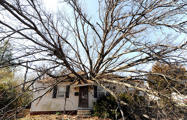 Globe/T. Rob Brown<br /> This tree, which fell into 404 Fieldcrest due to Tuesday night's severe storm, appears to be growing out of the center of the Pittsburg, Kan., home Wednesday morning, Feb. 29, 2012.