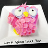 Globe/T. Rob Brown<br /> An owl cupcake Tuesday morning, Feb. 12, 2013, at Sweet Designs Cakery, owned by Heather Horton, 311 N. Broadway in downtown Pittsburg, Kan.