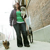 Globe/Roger Nomer<br /> Krystal Davis walks her dogs (from left) Carmen, Dutchie and Trust downtown on Wednesday afternoon.