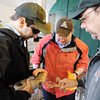Globe/T. Rob Brown<br /> Step 9: Roaring River State Park Fish Hatchery employees examine another sample of eggs from a female rainbow trout to make sure they are fertile. From left: resource assistants Caleb Benterbaugh and Dustin Back and Hatchery Manager Paul Spurgeon.