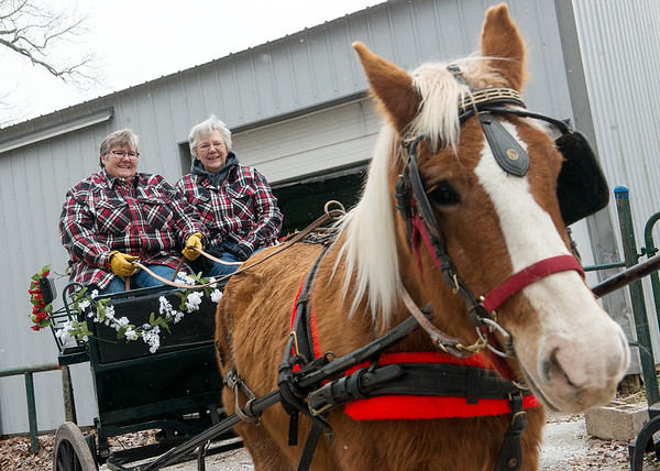 Christina Mackey, right, and Georgia Henderson will offer horse-driven carriage rides in Neosho with Gabby.<br /> Globe | Roger Nomer