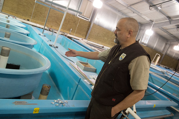 Bruce Hallman, education specialist with the Neosho National Fish Hatchery, talks about the installation of circular tanks on Monday.<br /> Globe | Roger Nomer
