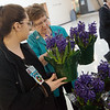 Ruth Ann Hodson, Freeman Auxiliary volunteer, right, helps Aubrey Holloway, Freeman nurse tech, with a flower purchase on Thursday at Freeman Hospital. Funds from the Valentine's Day sale went to help Freeman Auxiliary.<br /> Globe | Roger Nomer