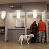 Susan and Michael Whaley, Joplin, and their dog Astrid, meet at the front desk of the new Joplin VA Clinic on Monday.<br /> Globe | Roger Nomer
