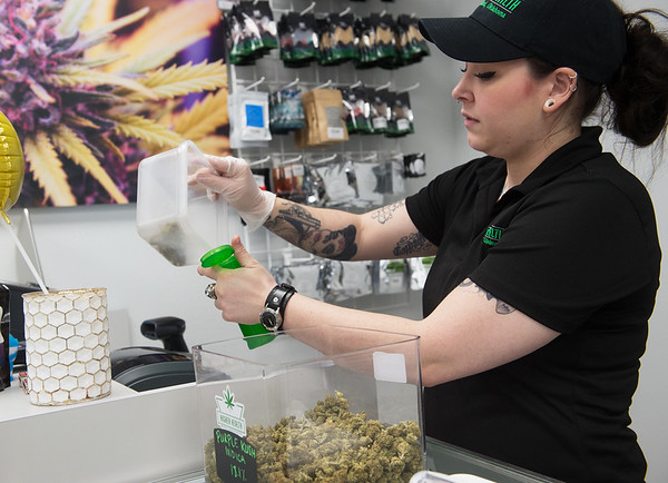 Veronica Copher, a bud tender at Higher Health in Afton, weighs Purple Kush for a customer on Monday.<br /> Globe   Roger Nomer