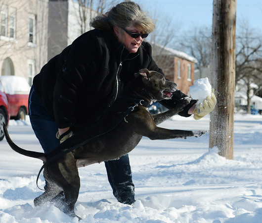 Globe/Roger Nomer<br /> Dee Wilson plays with her dog Roxy in the snow during a walk along Fourth Street on Monday morning.