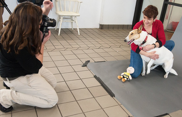 Globe/Roger Nomer<br /> Cassie Herlocker takes a photo of Diana Pritchard and her dog Whimsey on Wednesday at Main Street Pet Care. The business held photo sessions for pets, contributing the sitting fees to a fund for retired working dogs.