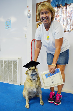 Courtesy Debbie Markman<br /> Connie Tiemann smiles as her dog, Tullah, celebrates in becoming a canine good citizen after completing a Tri-State Kennel Club class.